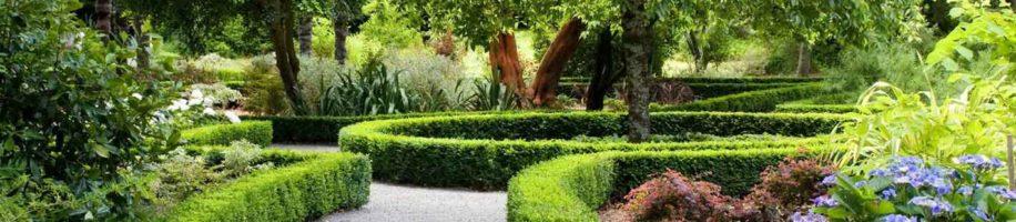 Ландшафтный дизайн, фитодизайн, вертикальное озеленение