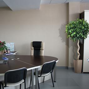 Озеленение офисов и бизнес центров