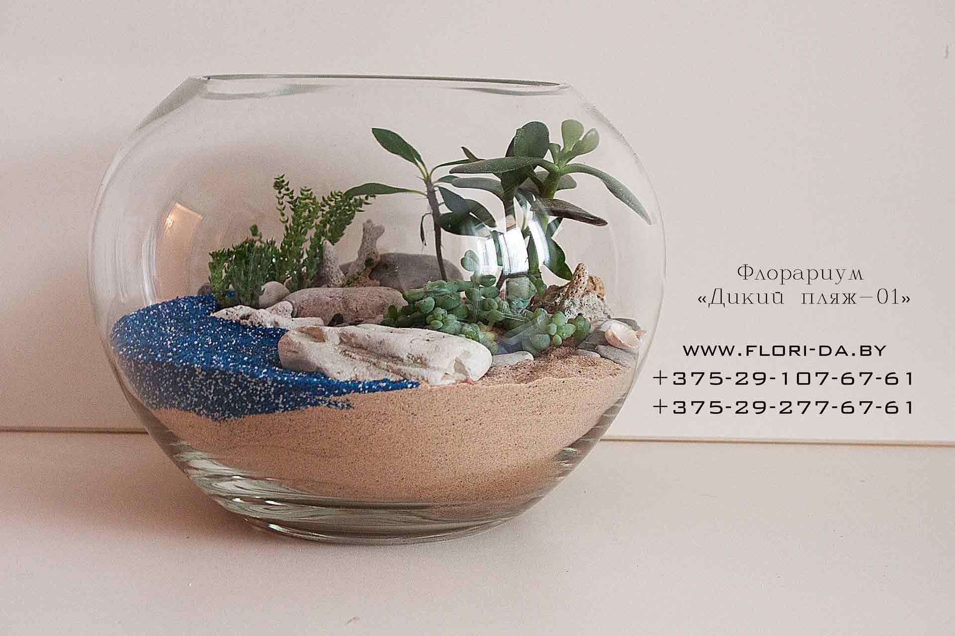 Цветной песок для флорариума своими руками