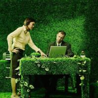 Озеленение интерьера в Минске