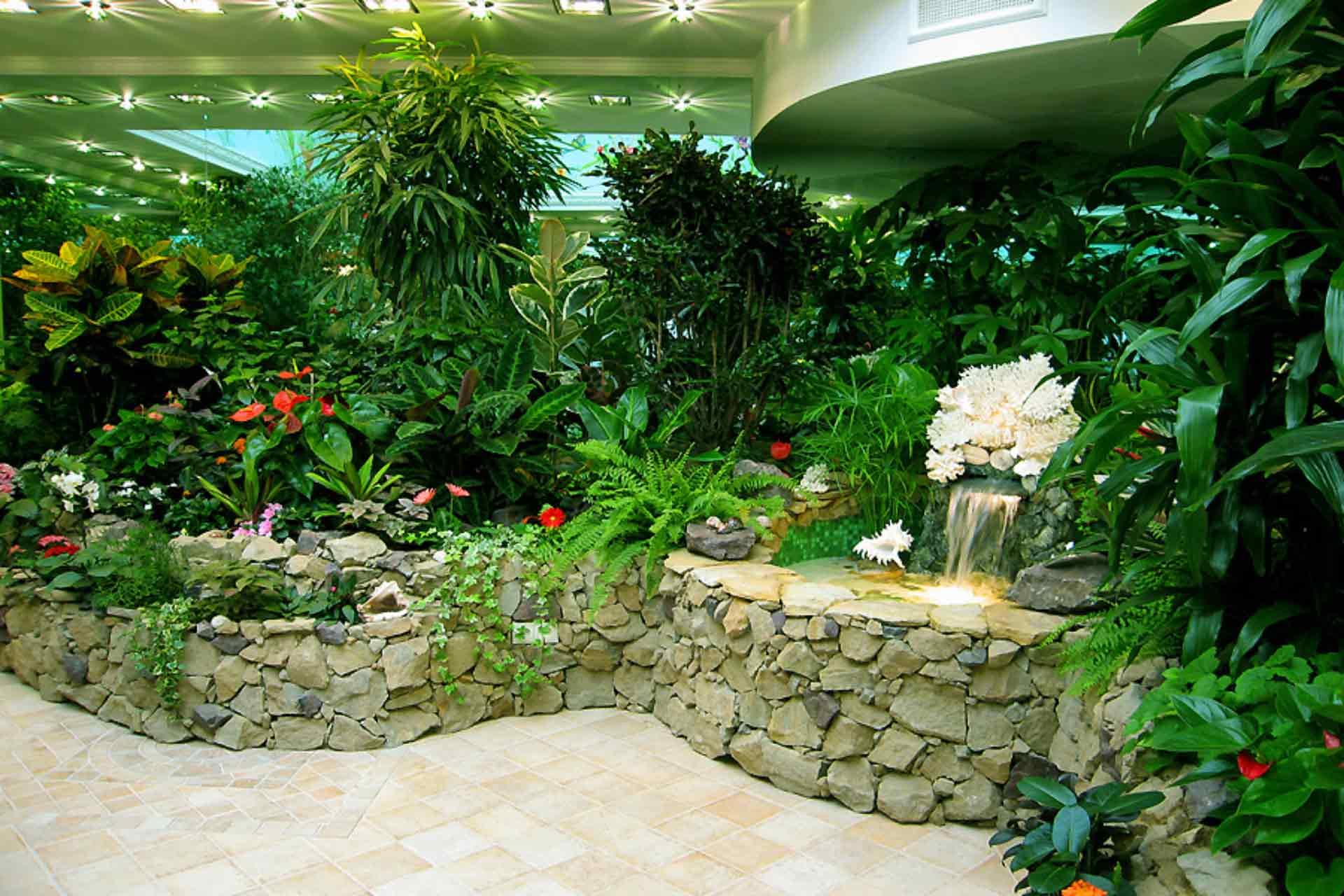 Как сделать зимний сад с растениями