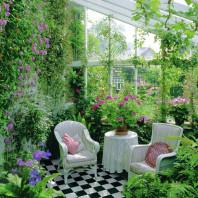 Устройство зимних садов в Минске