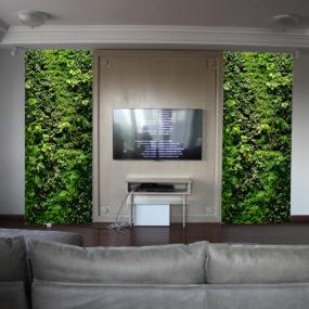 Фитодизайн и озеленение квартир