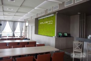 Фитодизайн ресторанов и отелей в Минске