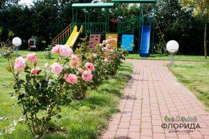 Устройство цветников и миксбордеров в Минске